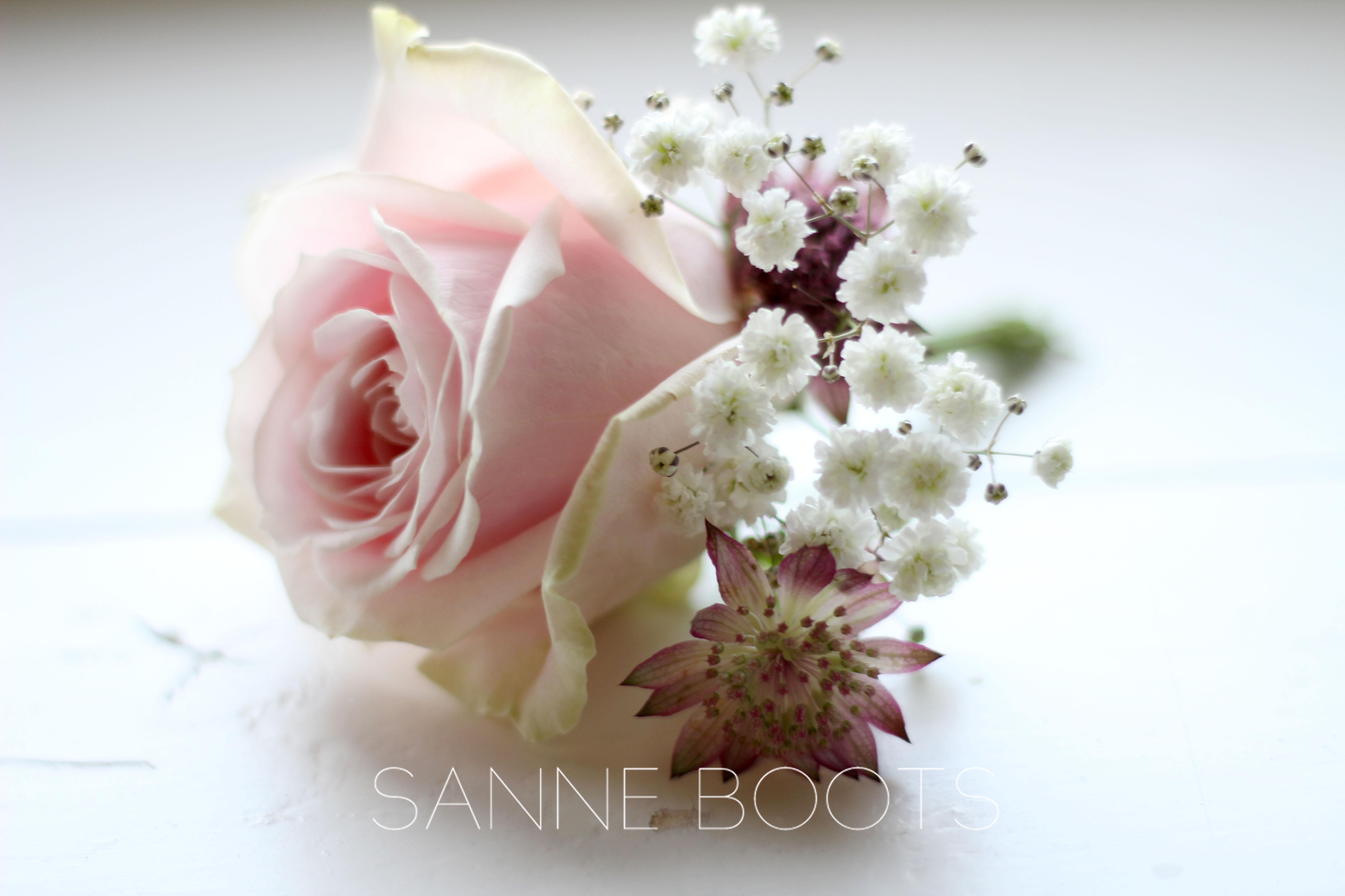 Corsage | Romantisch roze. Sanne Boots, Utrecht