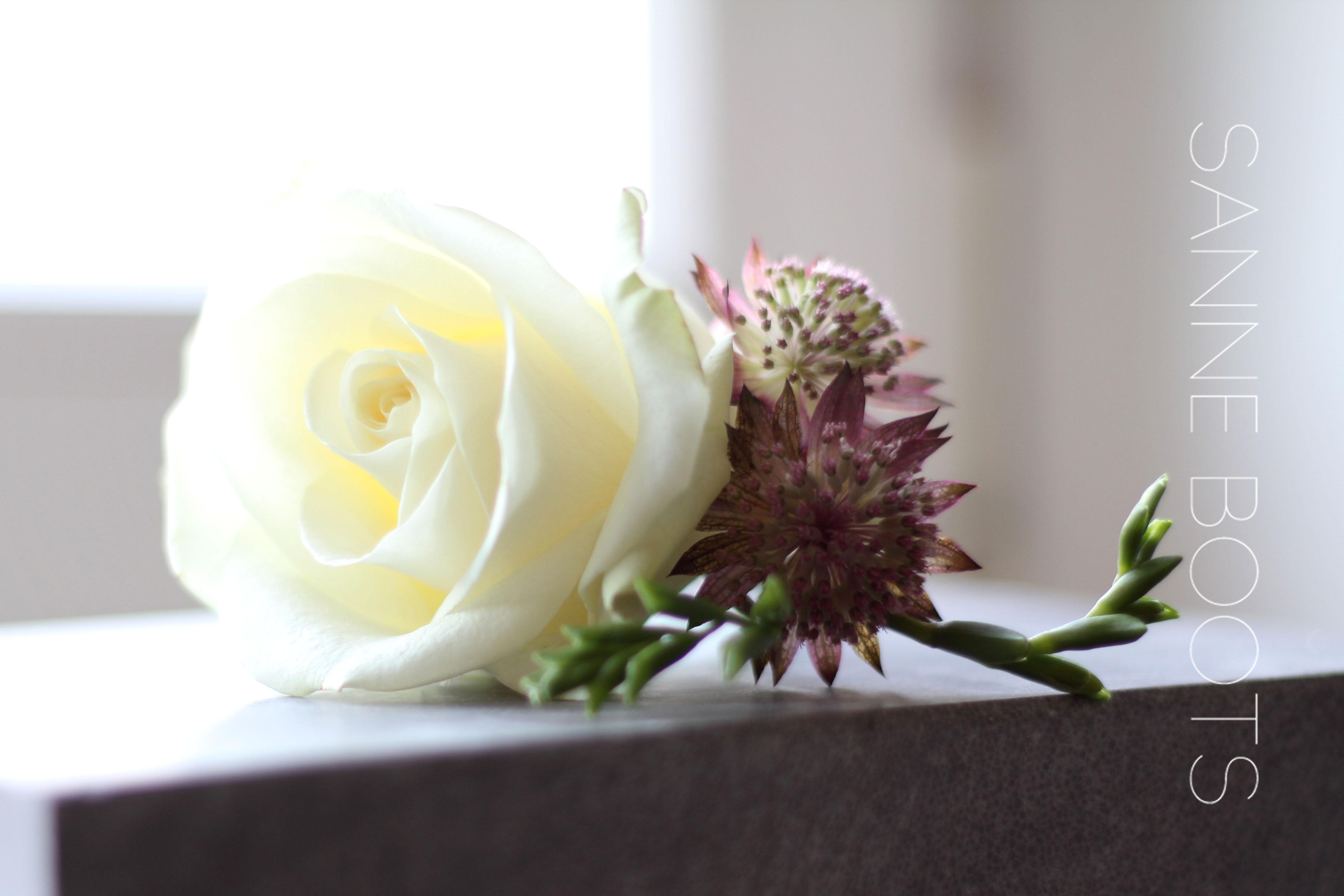 Corsage | Simpel en neutraal, zoals een gastencorsage moet zijn